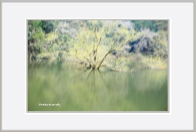 室生湖-4.jpg