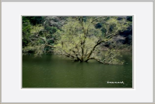 室生湖-5.jpg