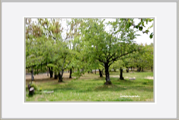現在の万博公園ー2.jpg