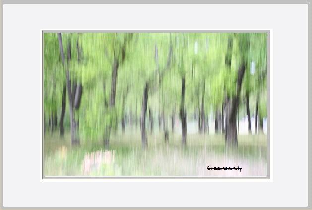 公園の風景ー3.jpg