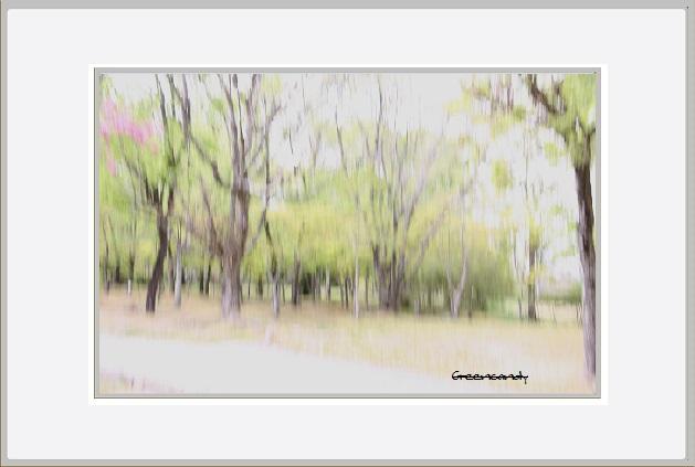公園風景ー1.jpg
