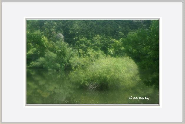 室生湖ー1.jpg