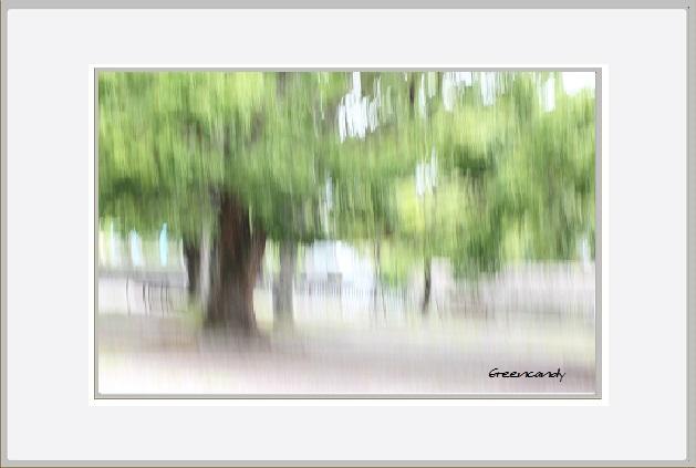 公園ー1.jpg