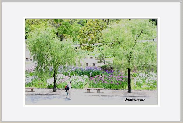 公園ー5.jpg