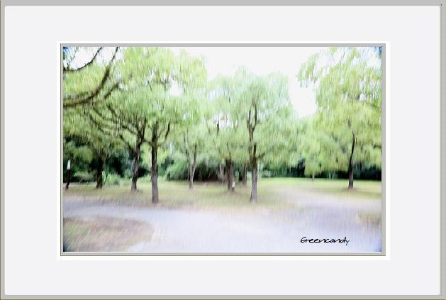 初夏の風景.jpg