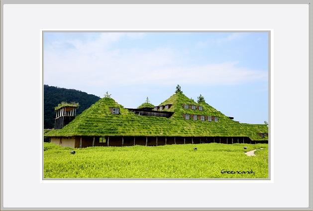 草の家ー1.jpg