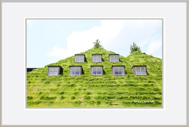 草の家ー2.jpg