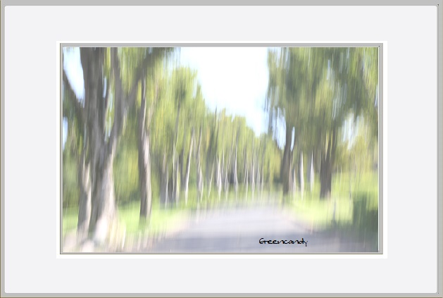 万博風景ー2.jpg