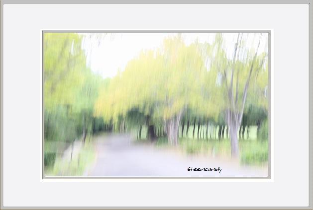万博公園初秋の風景ー4.jpg