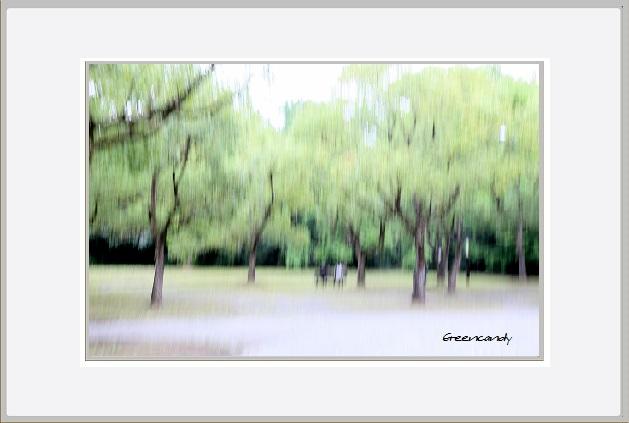 万博公園初秋の風景ー1.jpg