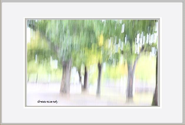 万博公園初秋の風景ー2.jpg