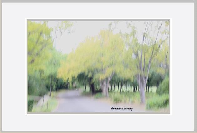 秋の風景ー4.jpg