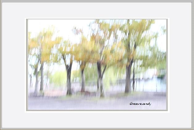 公園ぶらしー1.jpg