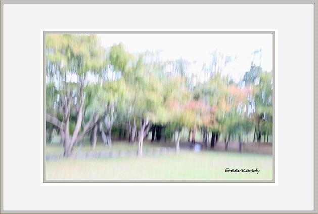 風景ー7.jpg