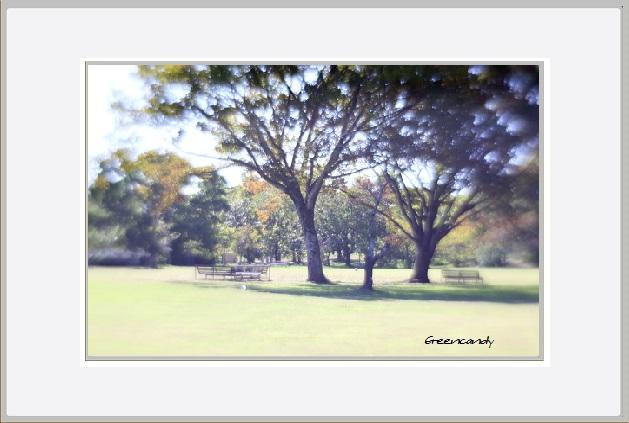 公園風景ー2.jpg