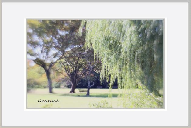 公園風景ー4.jpg