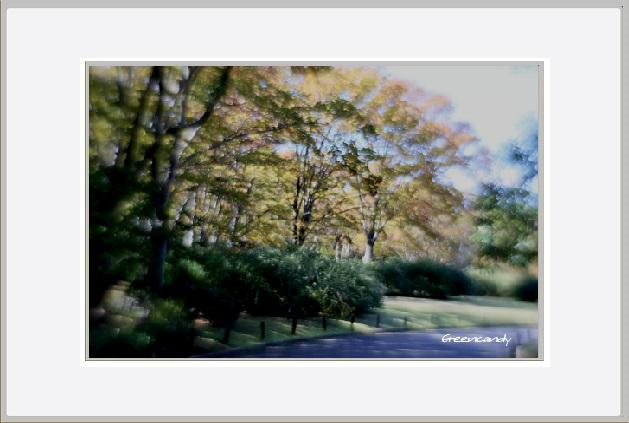 風景ー3.jpg
