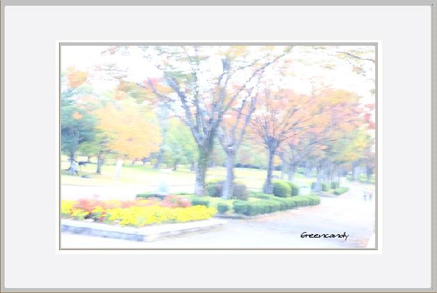 明るい秋ー2.jpg