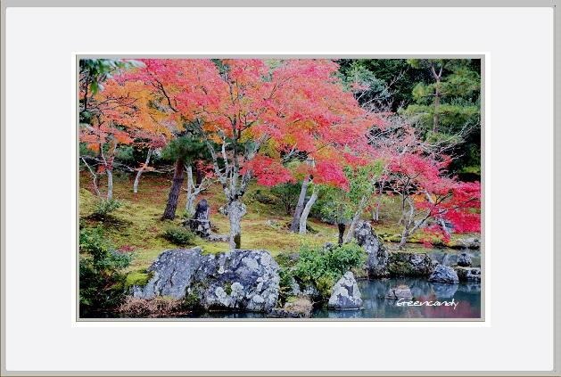 京都ー3.jpg