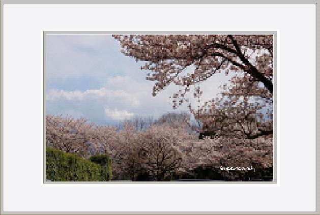 横浜ー1.jpg