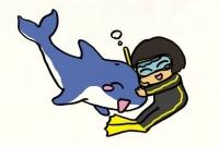 イルカ達と泳ぐ