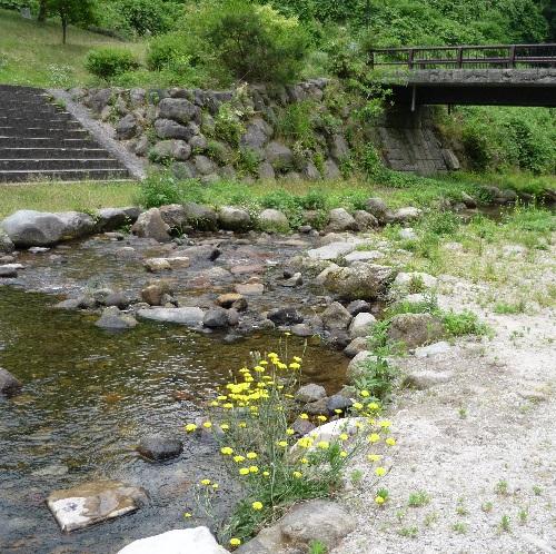 渓流植物園