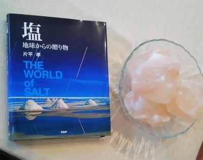 nico 岩塩