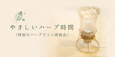 nico 岩塩 オーガニック 自然雑貨 アロマテラピー
