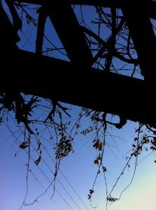 20120209_skyblue