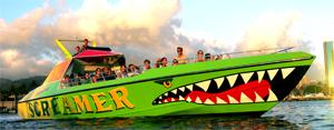 Honolulu Screamer