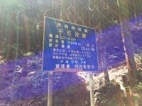 林道・千石谷線