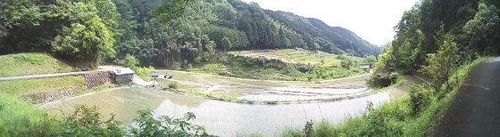 芋谷の棚田