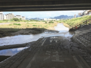 南河内サイクルラインは橋下の低いところが水没