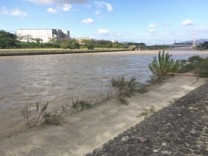 濁流となった石川