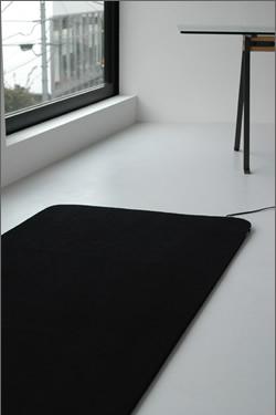 プラスマイナスゼロのカーペット