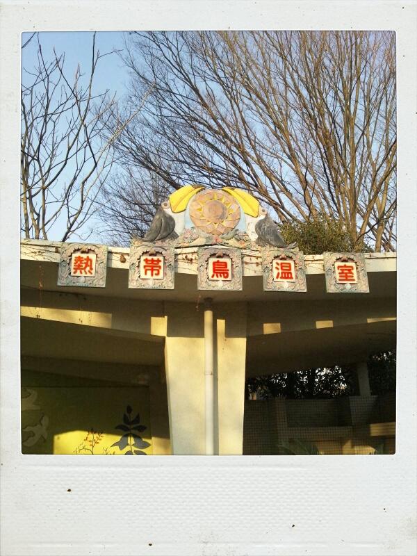 井の頭文化園の熱帯鳥温室