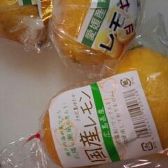 塩レモン仕込み・国産レモン