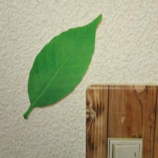葉っぱの温度計Leaf Thermometer緑