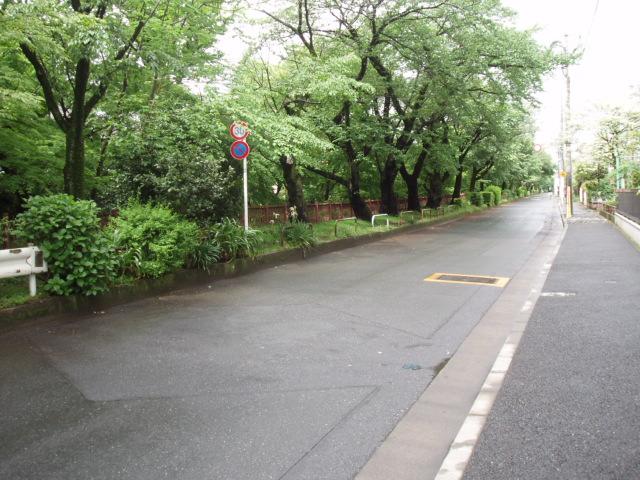 玉川上水緑道
