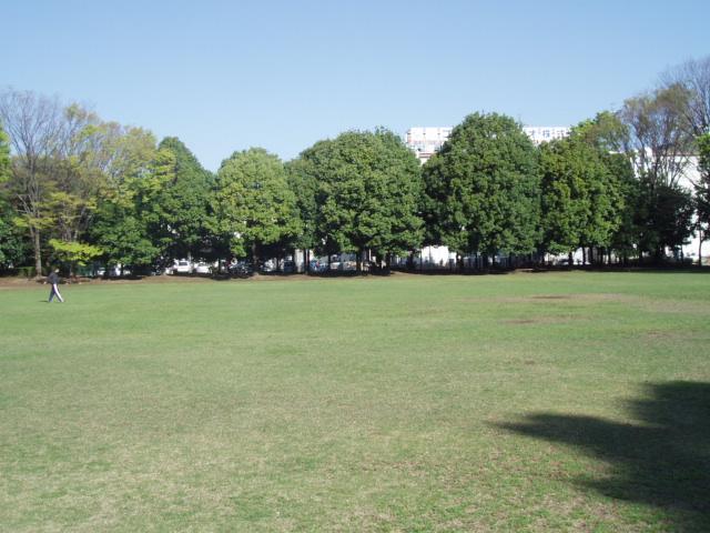新緑の季節 千代田公園