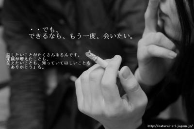 http://natural-s-l.jugem.jp/  12