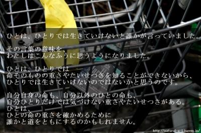 http://natural-s-l.jugem.jp/  10