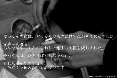 http://natural-s-l.jugem.jp/  9