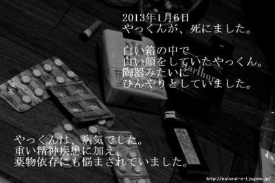 http://natural-s-l.jugem.jp/  2