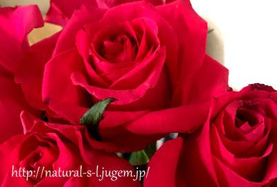 五本の薔薇