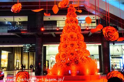真っ赤なバラのツリー