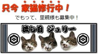 http://www.satoya-boshu.net/keisai/c2-179114.html
