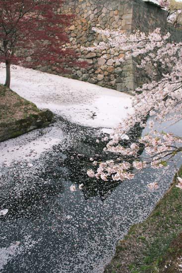 逆さ弘前城