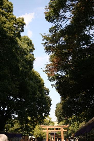 森と空と鳥居