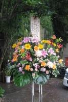 三波伸介一門会2009/6/28 花